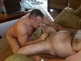 bear (gay), amateur (gay), daddy (gay), muscle (gay), old+young (gay), hd videos