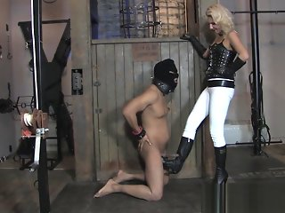 fetish, ballbusting, hd, straight, ,