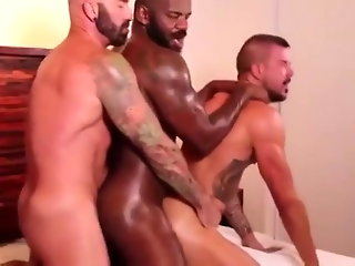 group sex (gay), daddy (gay), hunk (gay), interracial (gay), latino (gay), muscle (gay)